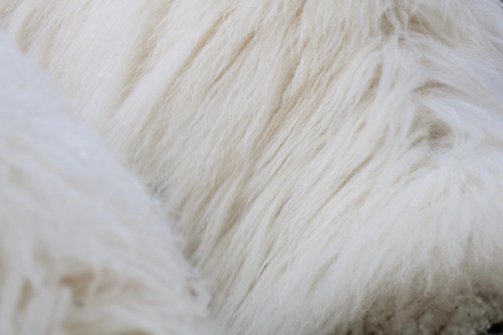 Detailansicht eines Schaffells.